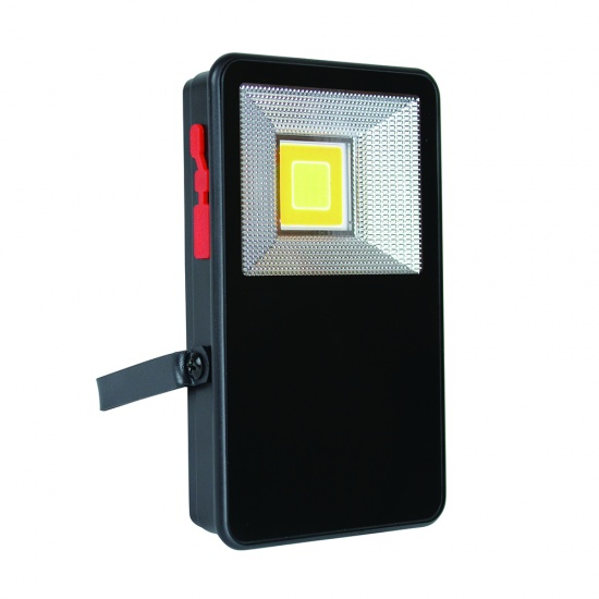 Max Rechargeable Floodlight